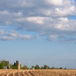 Field Corn & Winter Wheat Update-April 27