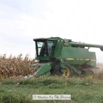 Field Corn Harvest
