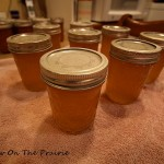 How To Make Apple Jelly